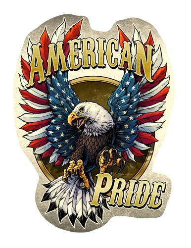 America Pride Eagle Novelty Sign Funny Home D 233 Cor Garage